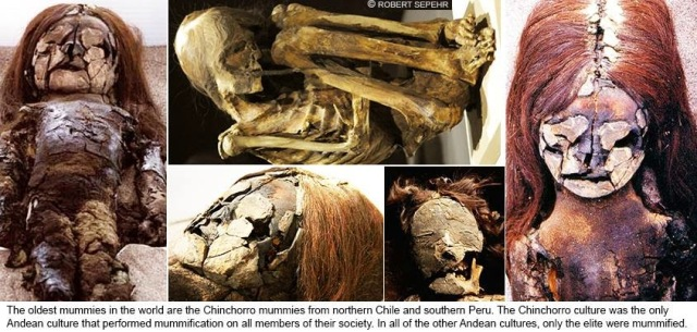 a look at the major tribes that inhabited the pre inca empire Indians were here far longer than previously thought, these researchers  the  current inhabitants of the beni still burn, although now it is to  dobyns began  his exploration of pre-columbian indian demography in the early 1950s,  the  profits had helped to fund pizarro's seizure of the incan empire,.