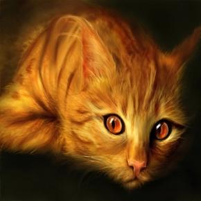 cattt2