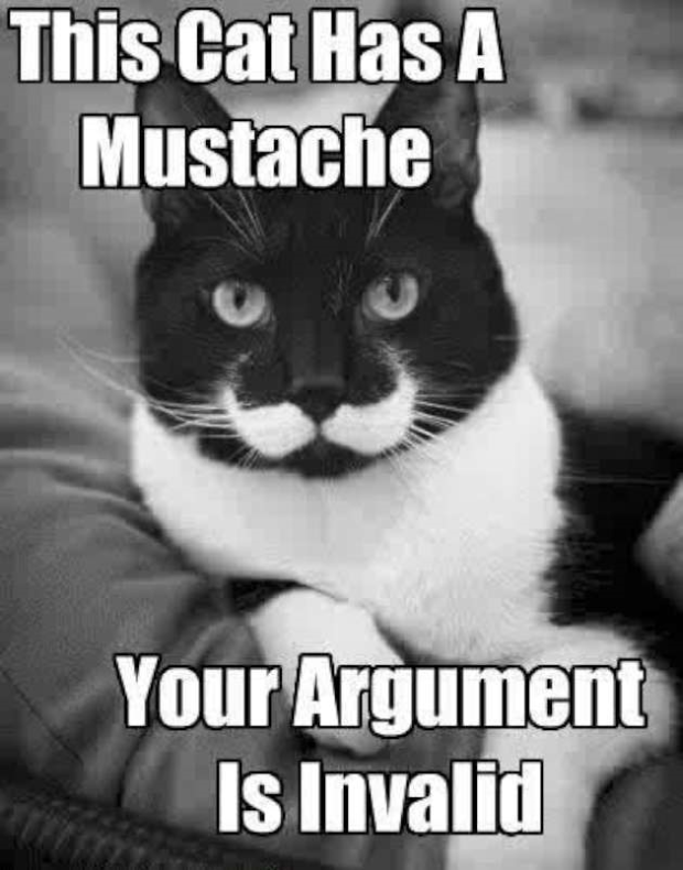 catmoustache