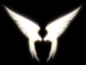 angel_wings_
