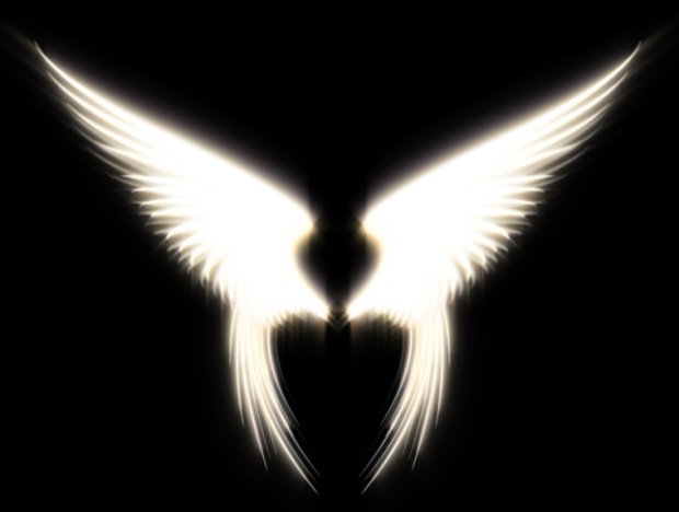 angel_wings_