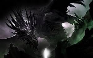 blackdragonx
