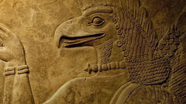 anunnaki-helmeth-winged-suit-bird