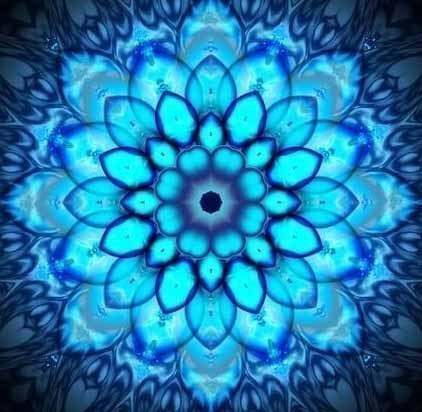blue_lotus_flower3