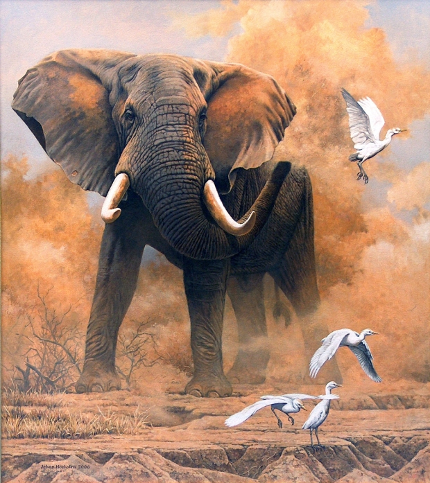 dusty-elephant-with-egrets-2006-johan-hoekstra-wildlife-art