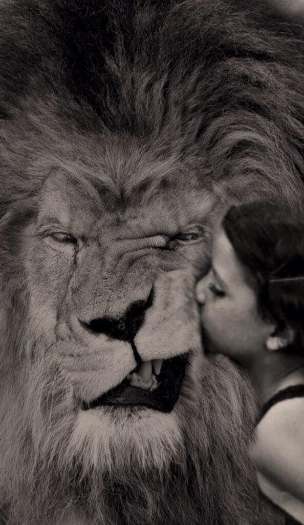 lionboy.pg