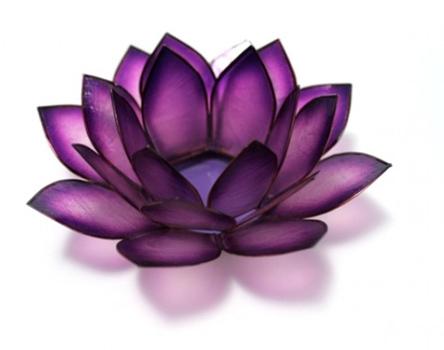 violet-crown-chakra-lotus_large