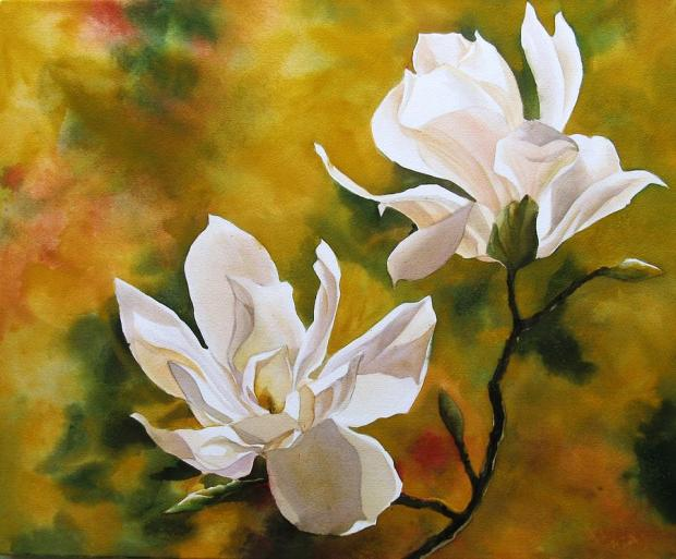 magnolia-in-spring-alfred-ng