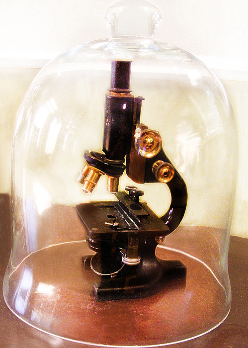 steampunk-microscope-under-bell-jar-blythe-ayne