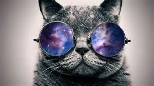 catspex