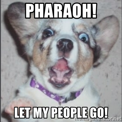 pharaoh-let-my-people-go