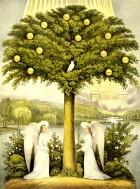 tree-of-life-13938595919K2