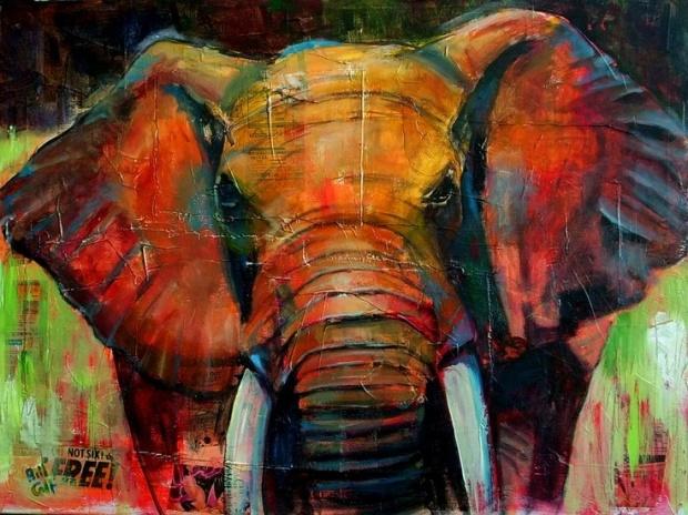 1e50bb8da2e849cc963a46b9e878c6d3-bill-obrien-elephant