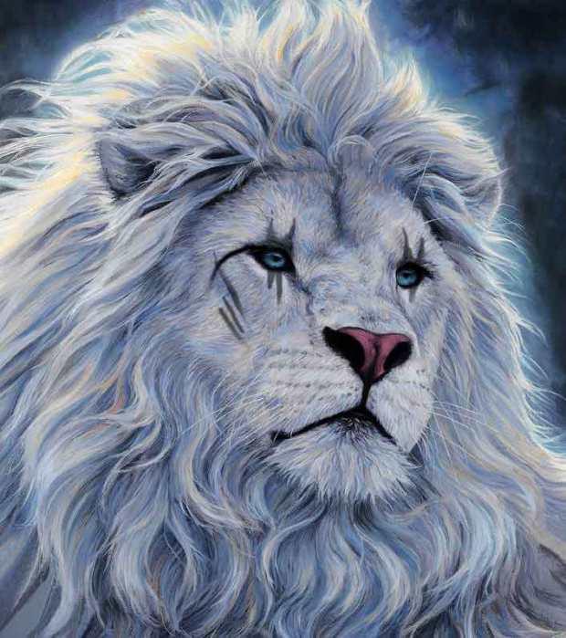 lionwhitex