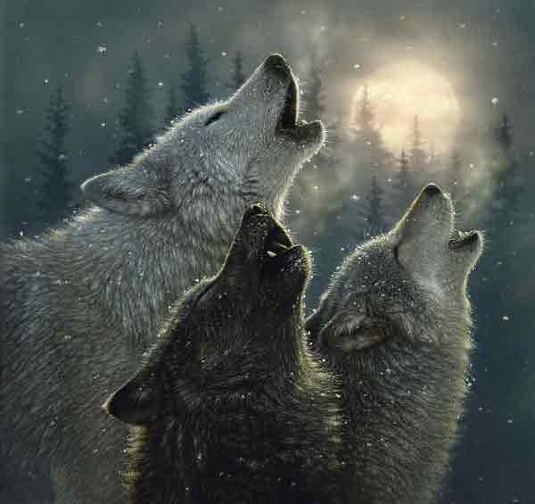 wolfvoice