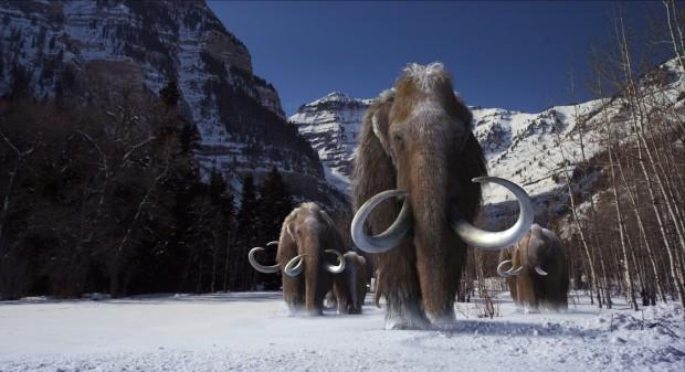 woollymammoth-large