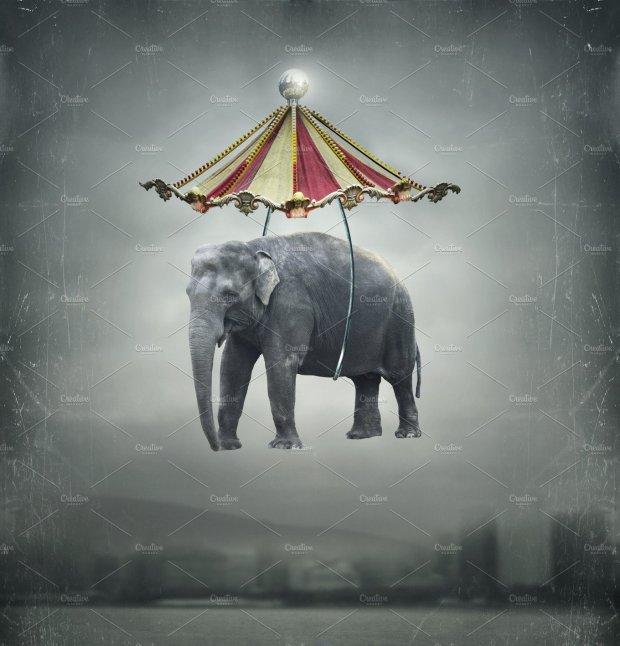 elephantfantasy_ret-