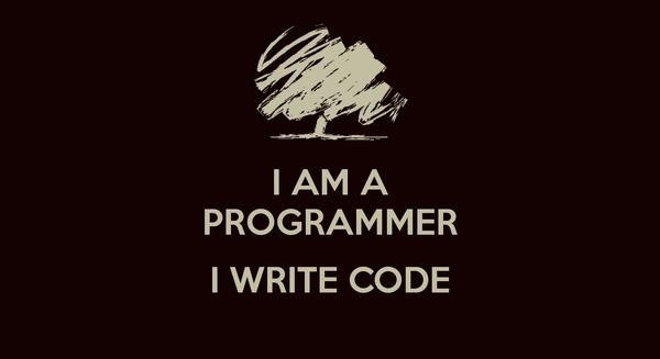 i-am-a-programmer-i-write-code