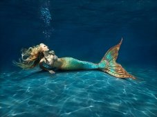 Mermaid-mermaids