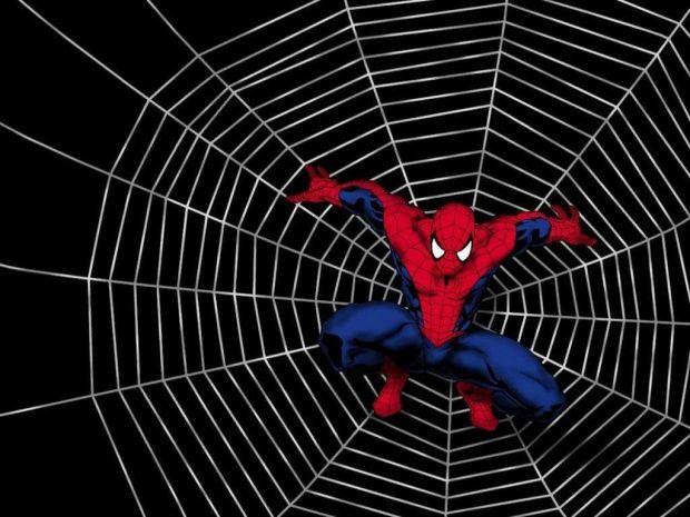 spiderman-clipart-spiderman-web-7