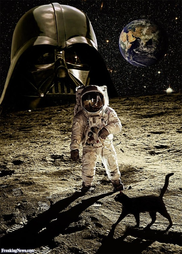 black-cat-on-the-moon-122888