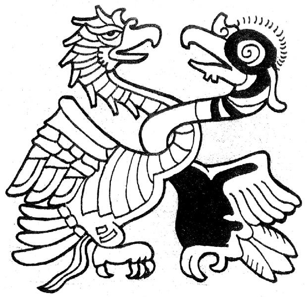 eagleandcondor