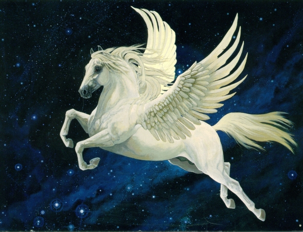 pegasus-pegasus-20674573-2121-1625