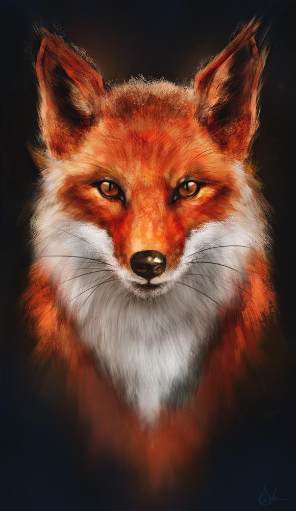 red_fox_or_firefox__by_sven_werren-d6j0byw