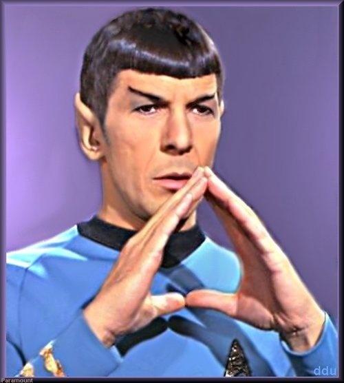 spock-mr-spock-12756094-500-556